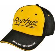 CAP 2015